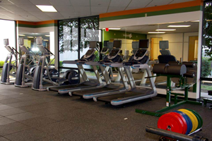 Synergy Park North Wellness Center