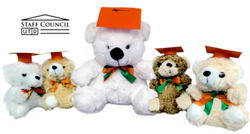 Purchase Teddy Bears for Your Graduates